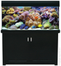 Picture of Living Reef 400 UPGRADED