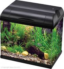 Picture of Aqua One 37 Eco Style