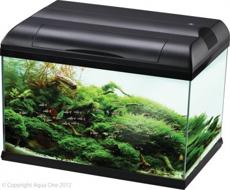 Picture of Aqua One 81 Eco Style