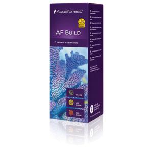 Picture of Aqua Forest Build
