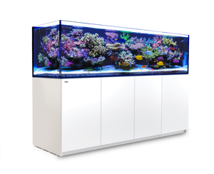 Picture of Red Sea Reefer XXXL 900 White SPECIAL PRE ORDER PRICE