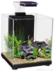 Picture of Aqua One Betta Sanctuary Black