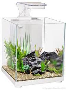 Picture of Aqua One Betta Sanctuary White