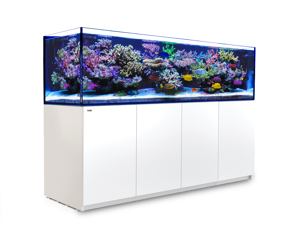 Picture of Red Sea Reefer S 1000 White SPECIAL PRE ORDER PRICE