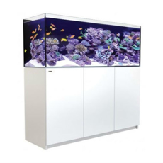 Picture of Red Sea Reefer XXL 750 White SPECIAL PRE ORDER PRICE