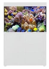 Picture of AquaOne Reef 300 S2 White